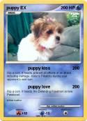 puppy EX