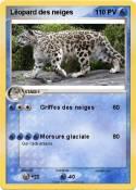 Léopard des