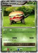 burger tortoise