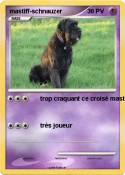mastiff-schnauzer