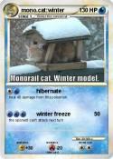 mono.cat:winter