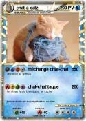 chat-a-catz