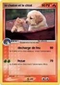 le chaton et le