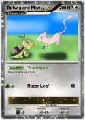Turtwig and Mew
