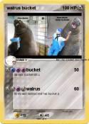 walrus bucket