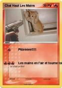 Chat Haut Les