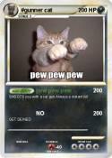#gunner cat