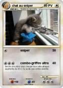 chat au sniper