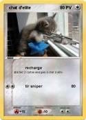 chat d'elite
