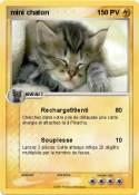 mini chaton