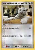 mon ami tigre