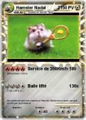 Hamster Nadal 2