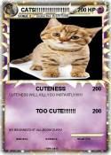 CATS!!!!!!!!!!!!!!!!!!!!