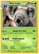 Thick Koala