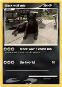 black wolf mix