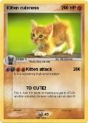 Kitten cuteness
