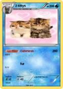 2 kittys