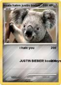 koala hates