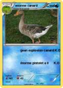 enorme canard 0