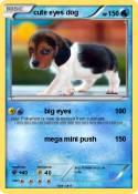 cute eyes dog