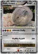 Fluffy Rodent
