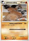 catkittens-eating