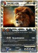 SACRE LION