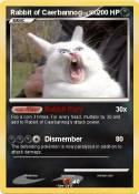 Rabbit of