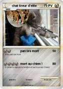 chat tireur