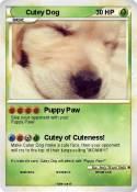 Cutey Dog