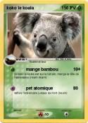 koko le koala