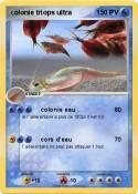 colonie triops
