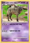 wolf cane corso