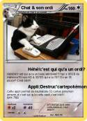 Chat & son ordi