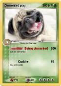 Demented pug