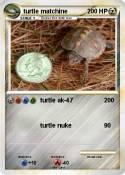 turtle matchine