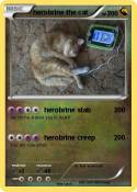herobrine the