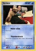 Torchick