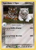 Tigre Blanc +