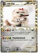 sup dog