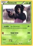 monkey EX