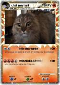 chat marrant