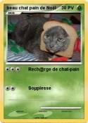 beau chat pain