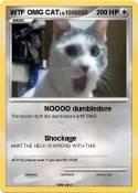 WTF OMG CAT