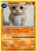 staud kitten