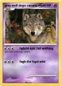 grey wolf dogo