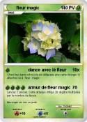 fleur magic
