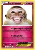 Derp Monkey