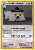 Sombrero Puppy!