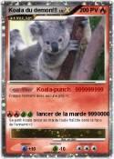 Koala du